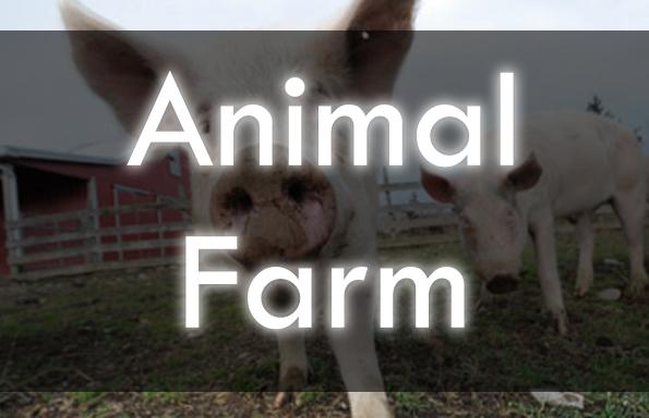 13 Animal Farm