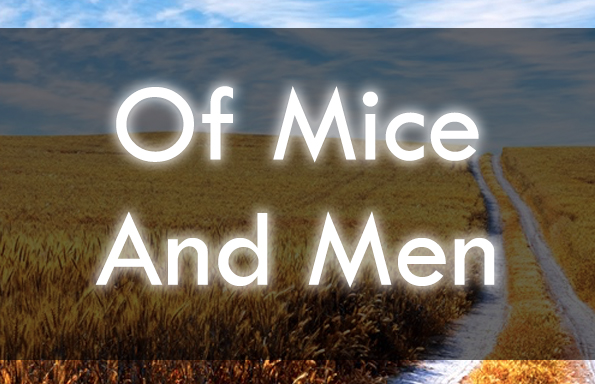 3 Of Mice And Men