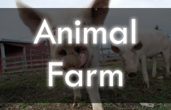 Animal Farm Unit